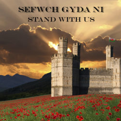 Sefwch Gyda Ni / Stand With Us (2014)